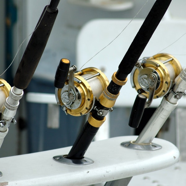 best fishing rod reviews