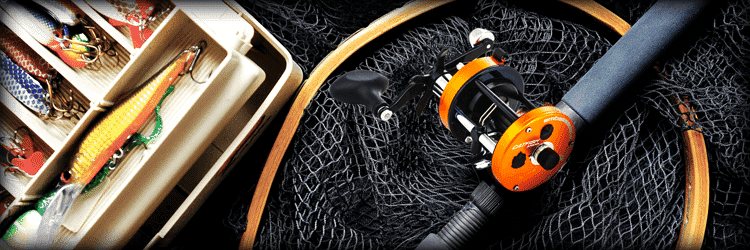 Best Cat Fishing Gear List
