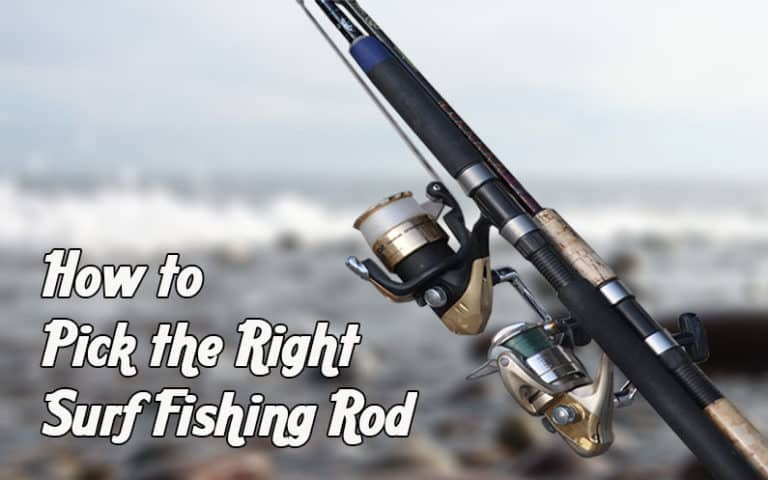 How to Pick the Right Surf Fishing Rod for You – A Must Read Guide