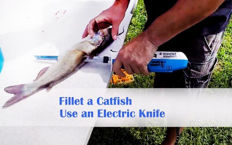 electric-knife-to-fillet-a-catfish