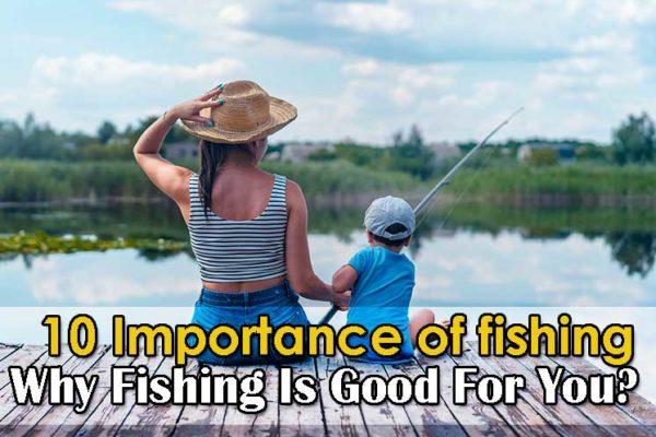 Importance of fishing