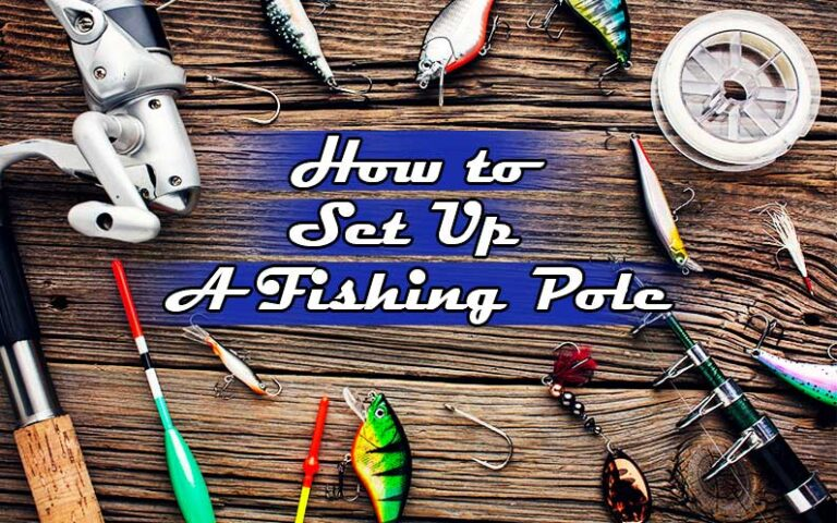 How to Set Up a Fishing Pole | Simple and Easy Guidelines